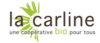 Logo CarlineREPRI