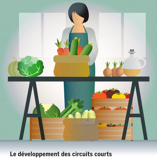 Le Développements Des Circuits Courts