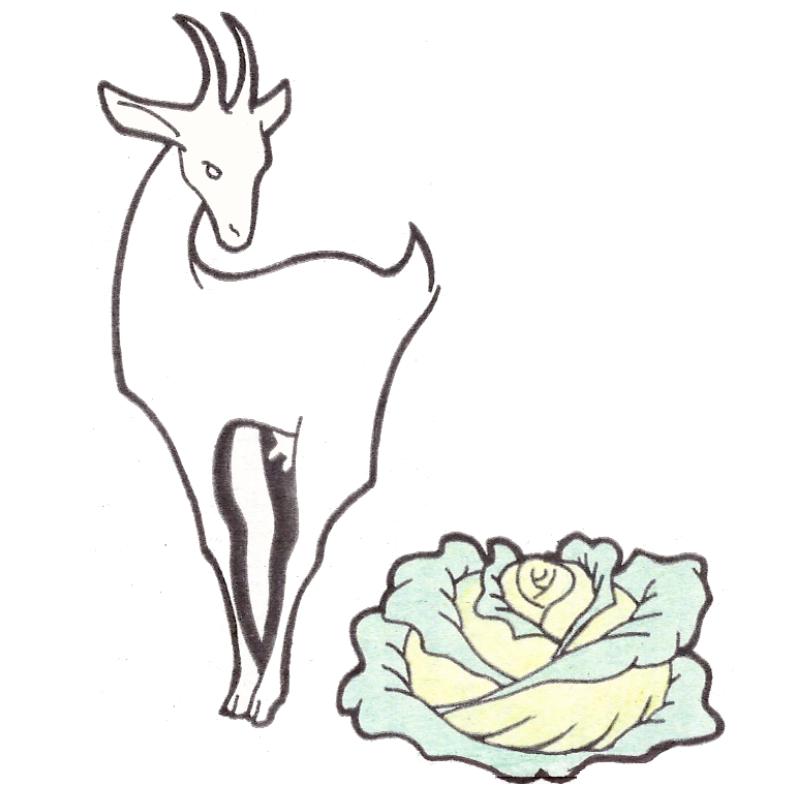 La Chèvre Et Le Chou