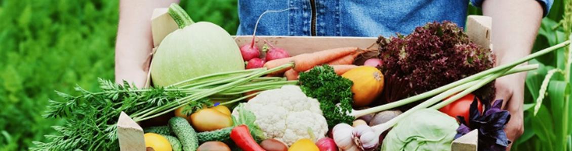 Opportunités De L'alimentation  Durable  Et Locale En Auvergne-Rhône-Alpes